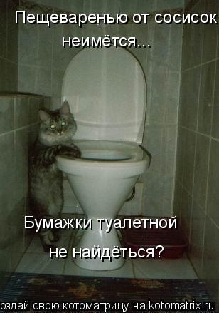 Котоматрица: Бумажки туалетной  Пещеваренью от сосисок  неимётся... не найдёться?