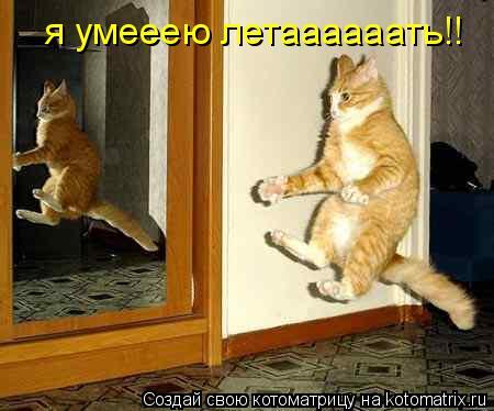 Котоматрица: я умееею летаааааать!!