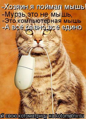 Котоматрица: -Хозяин,я поймал мышь! -Мурзь,это не мышь, -Это компьютерная мышь -А всё равно,всё едино