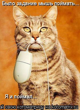 Котоматрица: Было задание мышь поймать... Я и поймал...