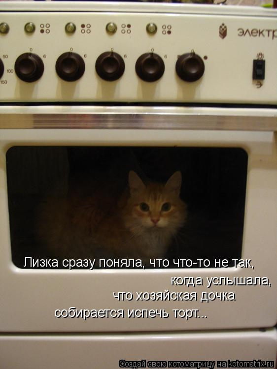 Котоматрица: Лизка сразу поняла, что что-то не так,  когда услышала,  что хозяйская дочка собирается испечь торт...