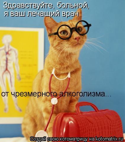 Котоматрица: Здравствуйте, больной,  я ваш лечащий врач от чрезмерного алкоголизма...