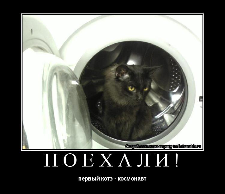 Котоматрица: ПОЕХАЛИ! первый котэ - космонавт