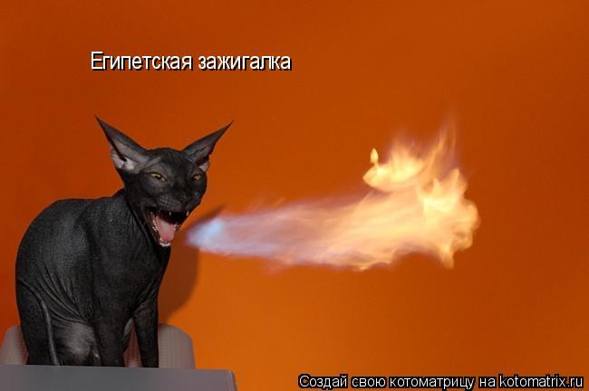 Котоматрица: Египетская зажигалка