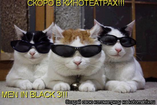 Котоматрица: СКОРО В КИНОТЕАТРАХ!!! MEN IN BLACK 3!!!