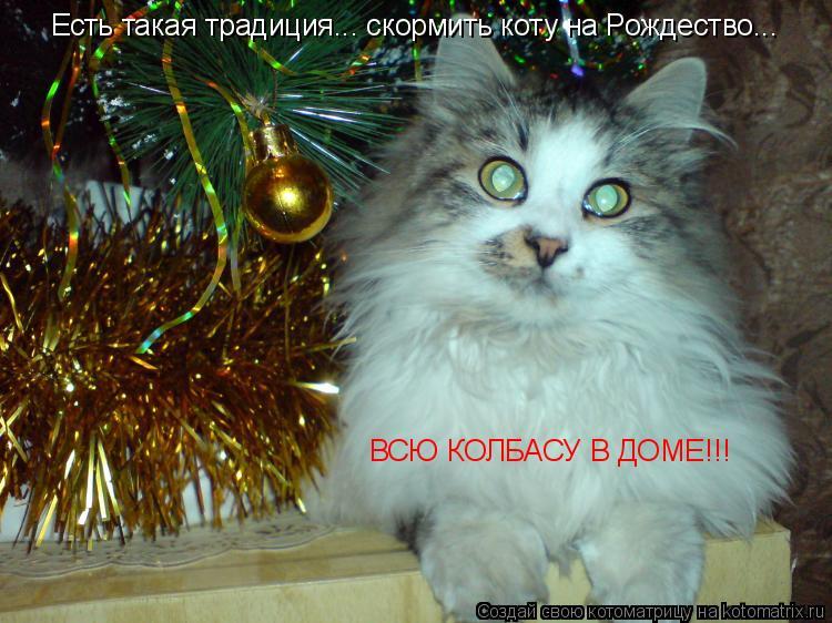 Котоматрица: Есть такая традиция... скормить коту на Рождество... ВСЮ КОЛБАСУ В ДОМЕ!!!
