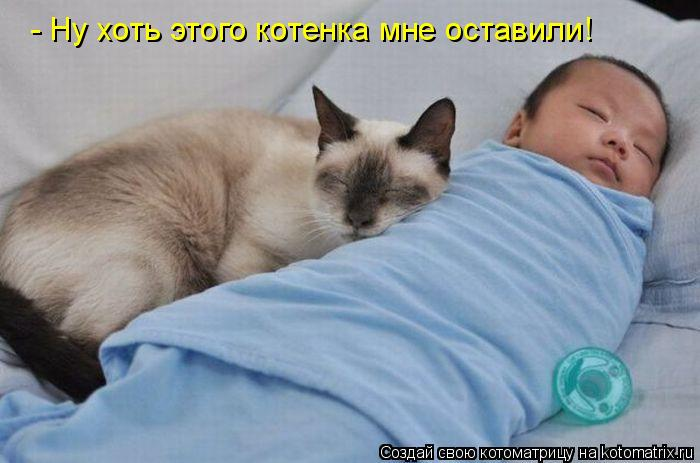 Котоматрица: - Ну хоть этого котенка мне оставили!