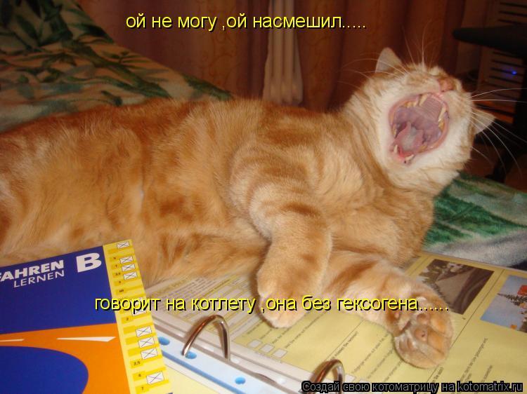 Котоматрица: ой не могу ,ой насмешил..... говорит на котлету ,она без гексогена......