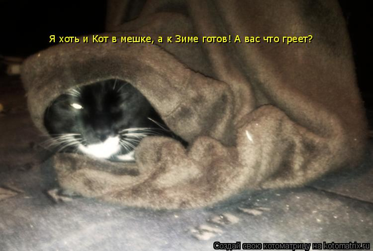 Котоматрица: Я хоть и Кот в мешке, а к Зиме готов! А вас что греет?