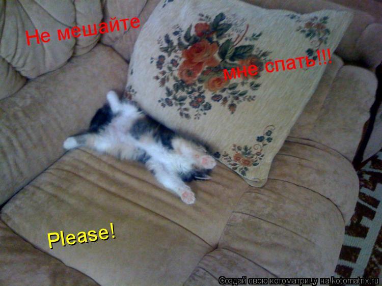Котоматрица: Не мешайте мне спать!!! Please!
