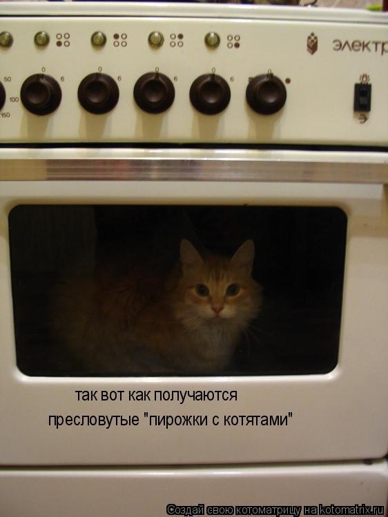 """Котоматрица: так вот как получаются  пресловутые """"пирожки с котятами"""""""