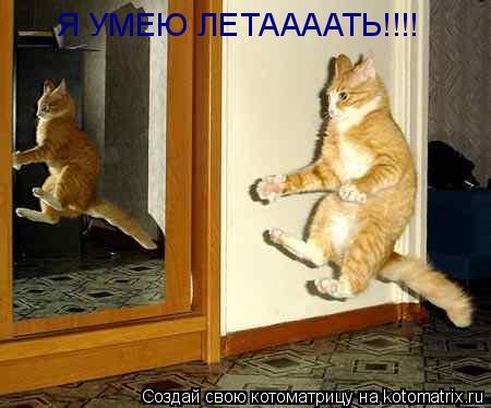 Котоматрица: Я УМЕЮ ЛЕТААААТЬ!!!!