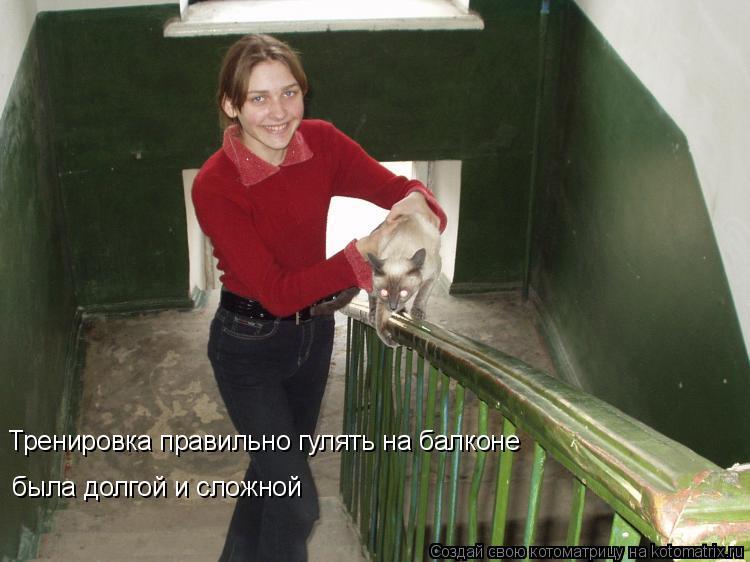 Котоматрица: Тренировка правильно гулять на балконе  была долгой и сложной