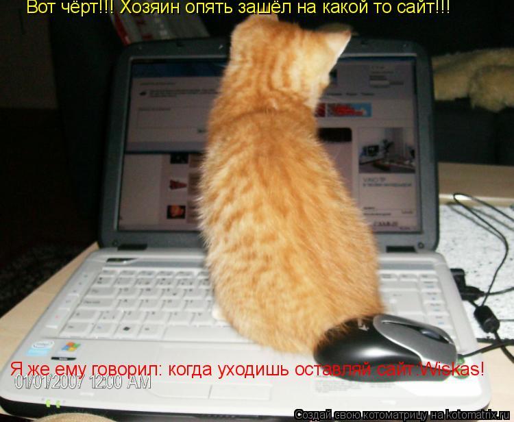 Котоматрица: Вот чёрт!!! Хозяин опять зашёл на какой то сайт!!! Я же ему говорил: когда уходишь оставляй сайт:Wiskas!