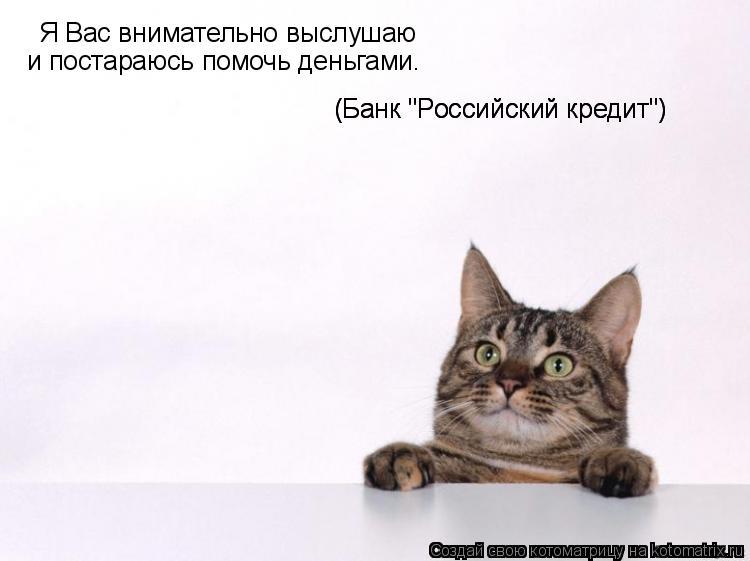 """Котоматрица: Я Вас внимательно выслушаю и постараюсь помочь деньгами. (Банк """"Российский кредит"""") (Банк """"Российский кредит"""")"""