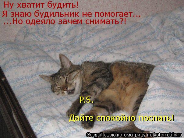 Котоматрица: Ну хватит будить! Я знаю будильник не помогает... ...Но одеяло зачем снимать?! P.S. Дайте спокойно поспать!