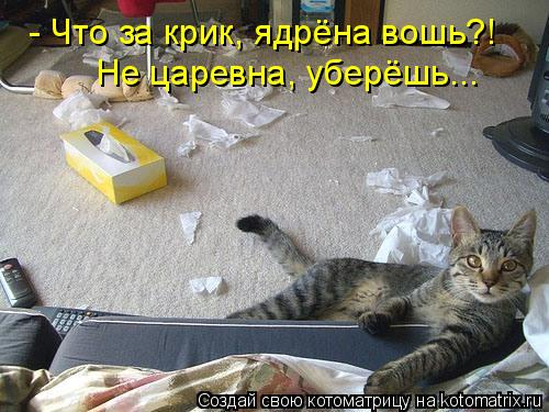 http://kotomatrix.ru/images/lolz/2010/11/14/737682.jpg