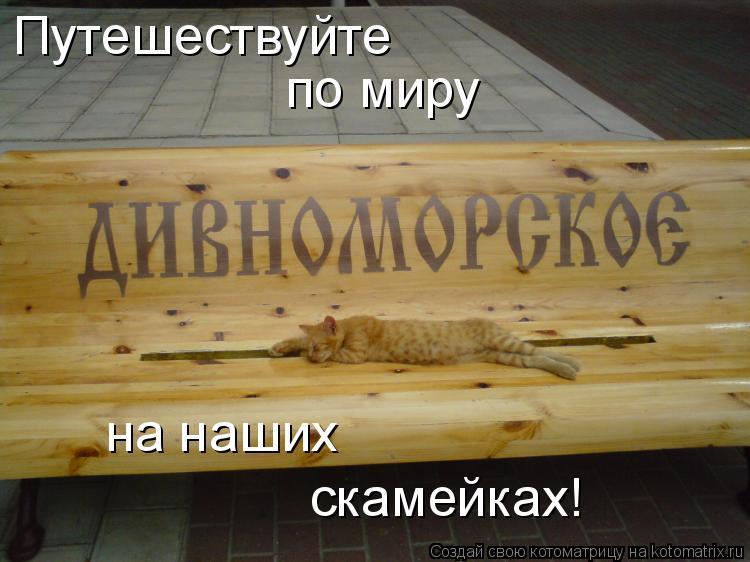 Котоматрица: Путешествуйте по миру на наших скамейках!