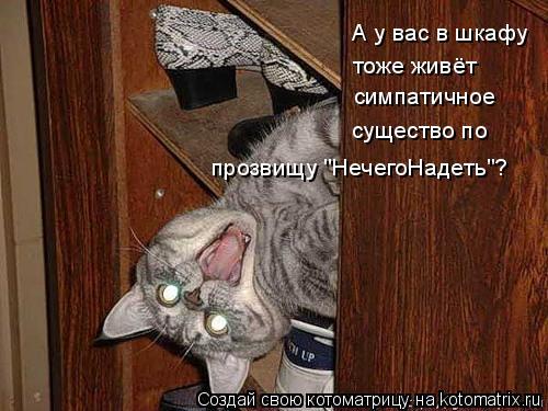 """Котоматрица: А у вас в шкафу тоже живёт симпатичное существо по прозвищу """"НечегоНадеть""""?"""