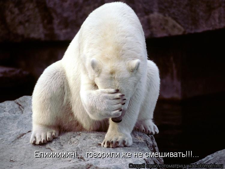 Котоматрица: Блиииииин!... говорили же не смешивать!!!...