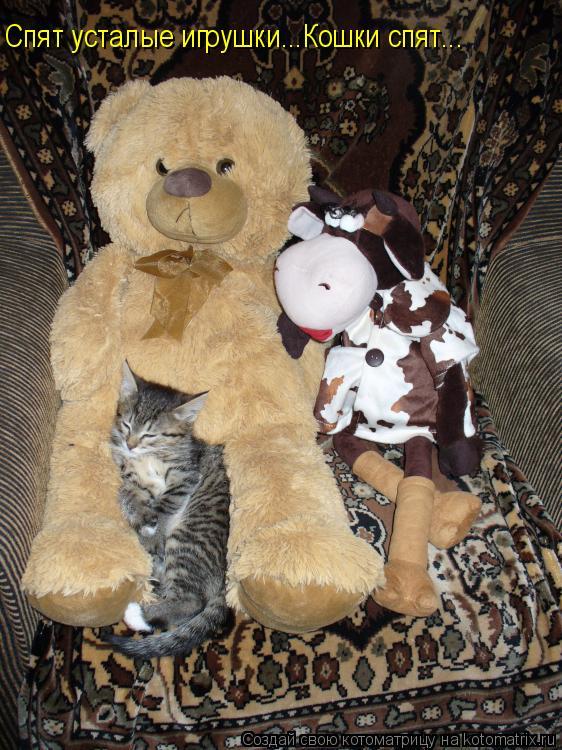 Котоматрица: Спят усталые игрушки...Кошки спят...
