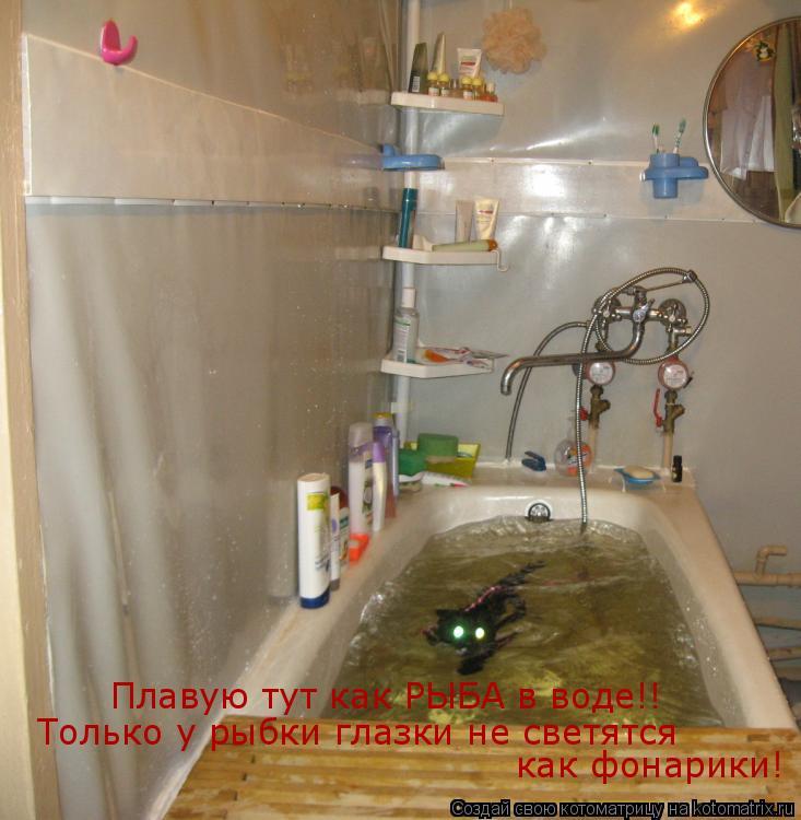 Котоматрица: Плавую тут как РЫБА в воде!! Только у рыбки глазки не светятся как фонарики!