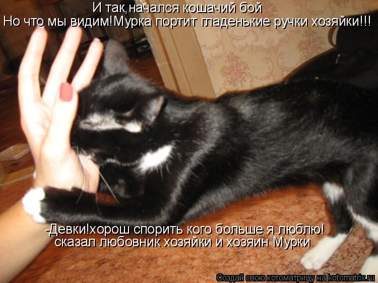 Котоматрица: И так,начался кошачий бой Но что мы видим!Мурка портит гладенькие ручки хозяйки!!! -Девки!хорош спорить кого больше я люблю! сказал любовник