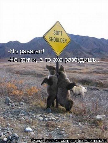 Котоматрица: -No pasaran! -Не кричи, а то эхо разбудишь...
