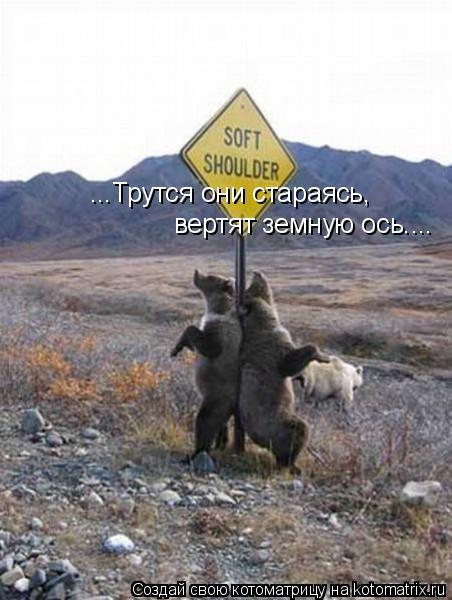 Котоматрица: ...Трутся они стараясь,  вертят земную ось....