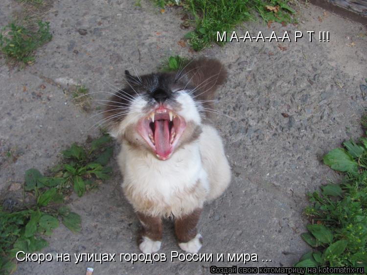 Котоматрица: М А-А-А-А-А Р Т !!! Скоро на улицах городов России и мира ...