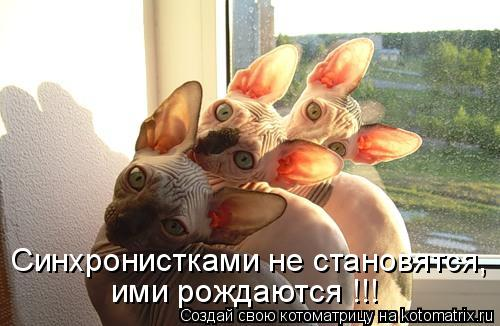 Синхронистками не становятся, ими рождаются !!!