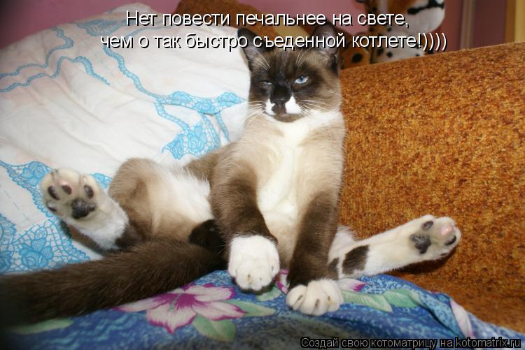 Котоматрица: Нет повести печальнее на свете, чем о так быстро съеденной котлете!))))