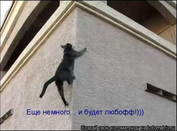 Котоматрица: Еще немного... и будет любофф!)))