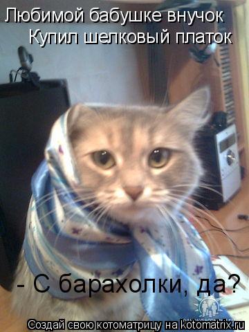 Котоматрица: Любимой бабушке внучок Купил шелковый платок - С барахолки, да?