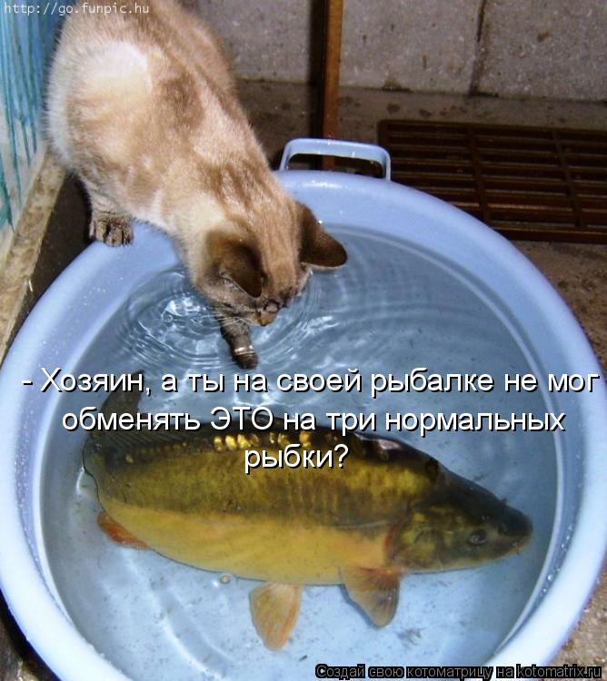 - Хозяин, а ты на своей рыбалке не мог обменять ЭТО на три нормальных