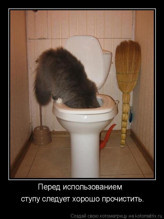 Котоматрица: Перед использованием ступу следует хорошо прочистить.