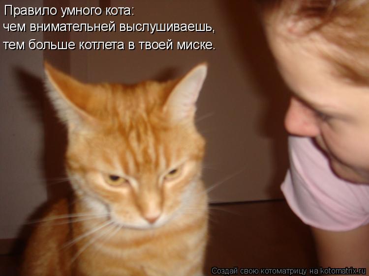 Котоматрица: Правило умного кота: чем внимательней выслушиваешь, тем больше котлета в твоей миске.