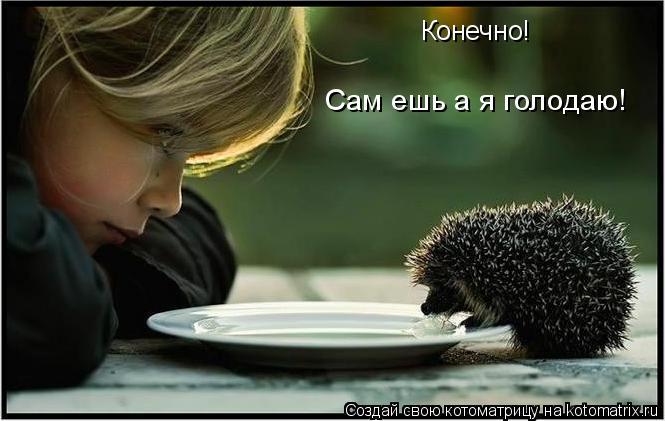 Котоматрица: Конечно!  Сам ешь а я голодаю!