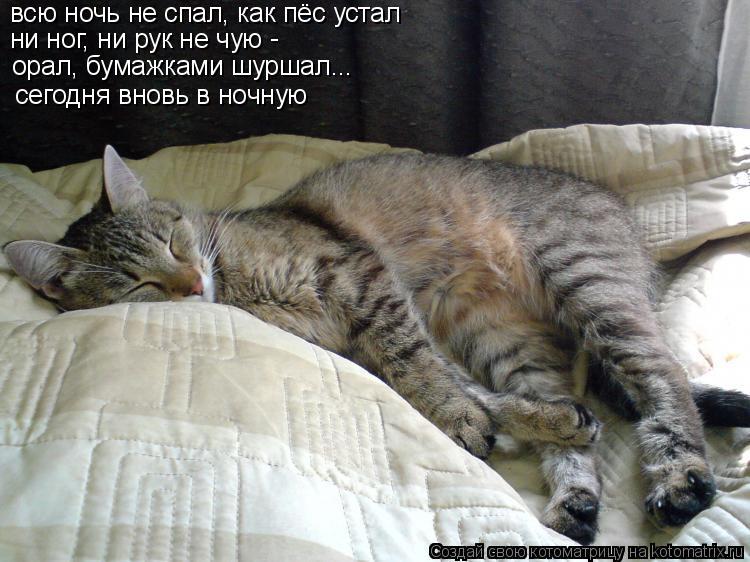 Котоматрица: всю ночь не спал, как пёс устал ни ног, ни рук не чую - орал, бумажками шуршал... сегодня вновь в ночную
