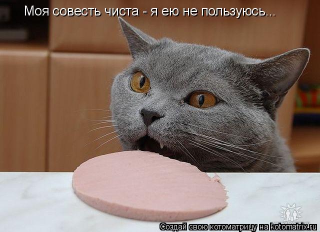 Котоматрица: Моя совесть чиста - я ею не пользуюсь...
