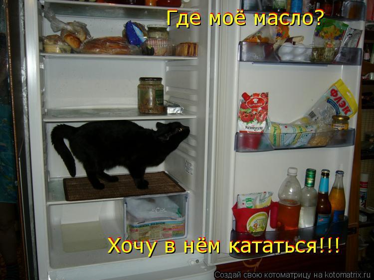 Котоматрица: Где моё масло? Где моё масло? Хочу в нём кататься!!! Хочу в нём кататься!!!