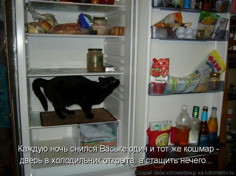 Котоматрица: Каждую ночь снился Ваське один и тот же кошмар - дверь в холодильник открыта, а стащить нечего...