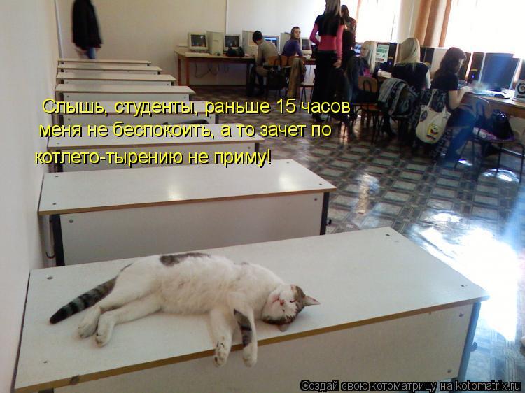 Котоматрица: Слышь, студенты, раньше 15 часов  меня не беспокоить, а то зачет по котлето-тырению не приму! котлето-тырению не приму!