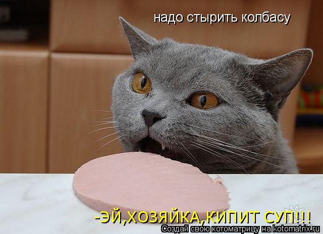 Котоматрица: надо стырить колбасу -ЭЙ,ХОЗЯЙКА,КИПИТ СУП!!!