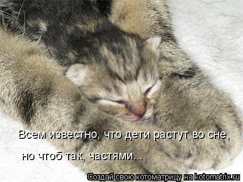 Котоматрица: Всем известно, что дети растут во сне, но чтоб так, частями...