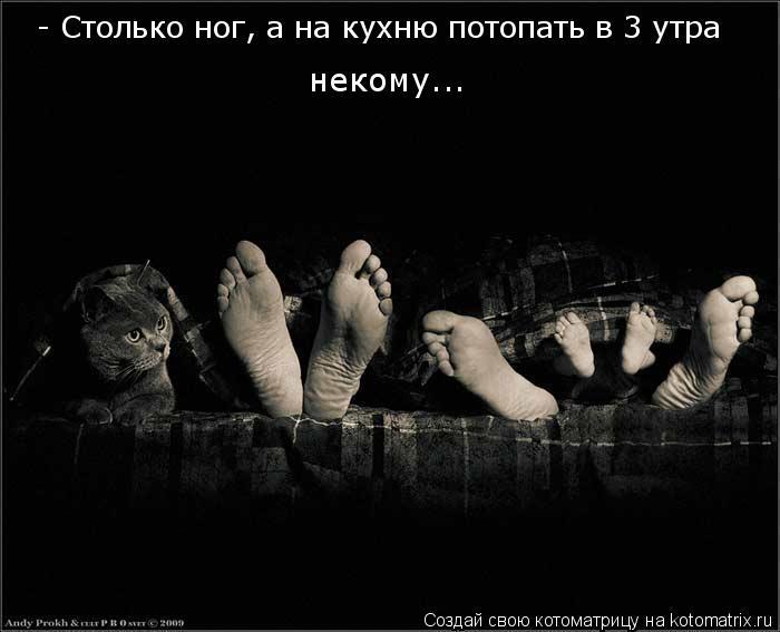 - Столько ног, а на кухню потопать в 3 утра некому...