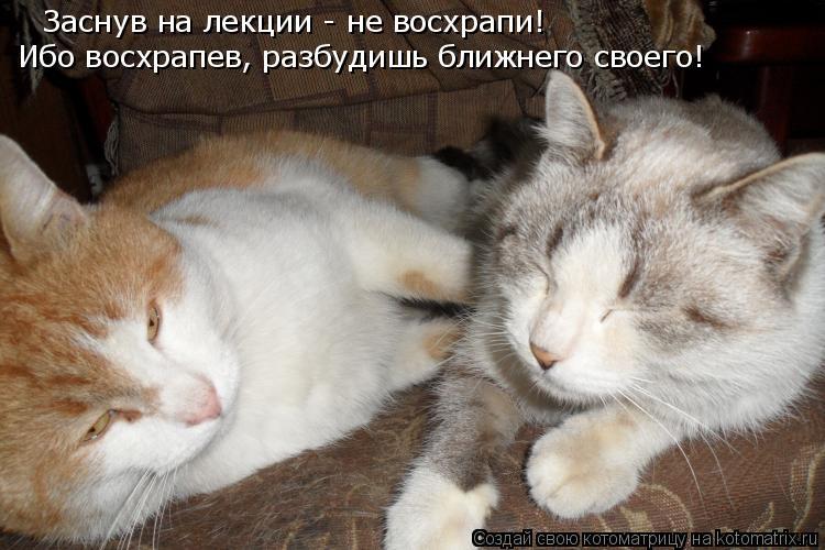 Котоматрица: Заснув на лекции - не восхрапи!  Ибо восхрапев, разбудишь ближнего своего!