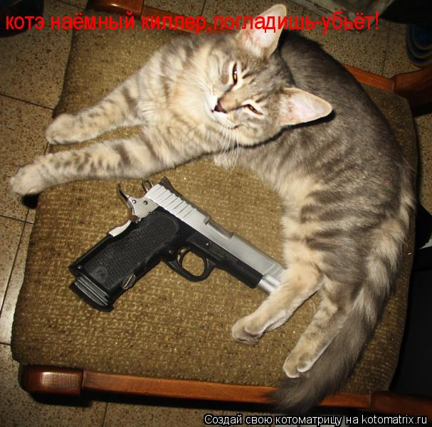 Котоматрица: котэ наёмный киллер,погладишь-убьёт!