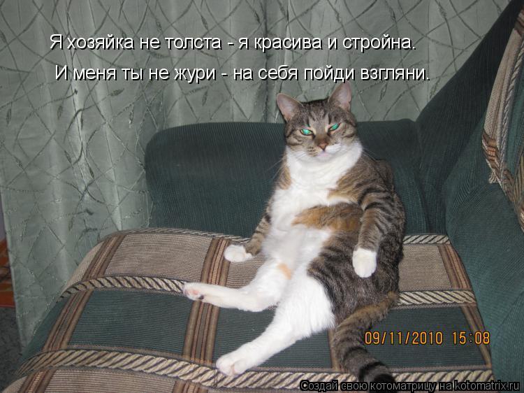 Котоматрица: Я хозяйка не толста - я красива и стройна. И меня ты не жури - на себя пойди взгляни Я хозяйка не толста - я красива и стройна.  И меня ты не жури