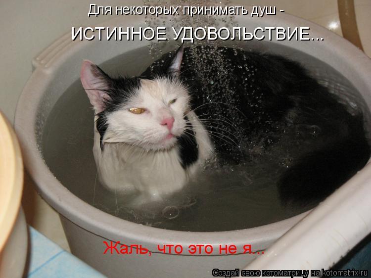 Котоматрица: Для некоторых принимать душ -  ИСТИННОЕ УДОВОЛЬСТВИЕ... Жаль, что это не я...
